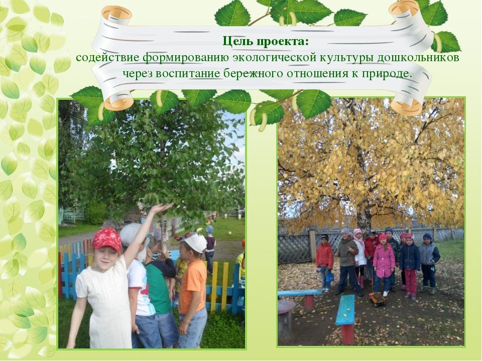 Цель проекта: содействие формированию экологической культуры дошкольников че...
