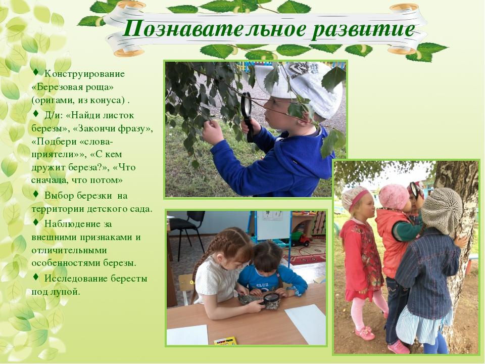 Познавательное развитие  Конструирование «Березовая роща» (оригами, из кону...