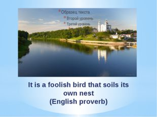 It is a foolish bird that soils its own nest (English proverb)