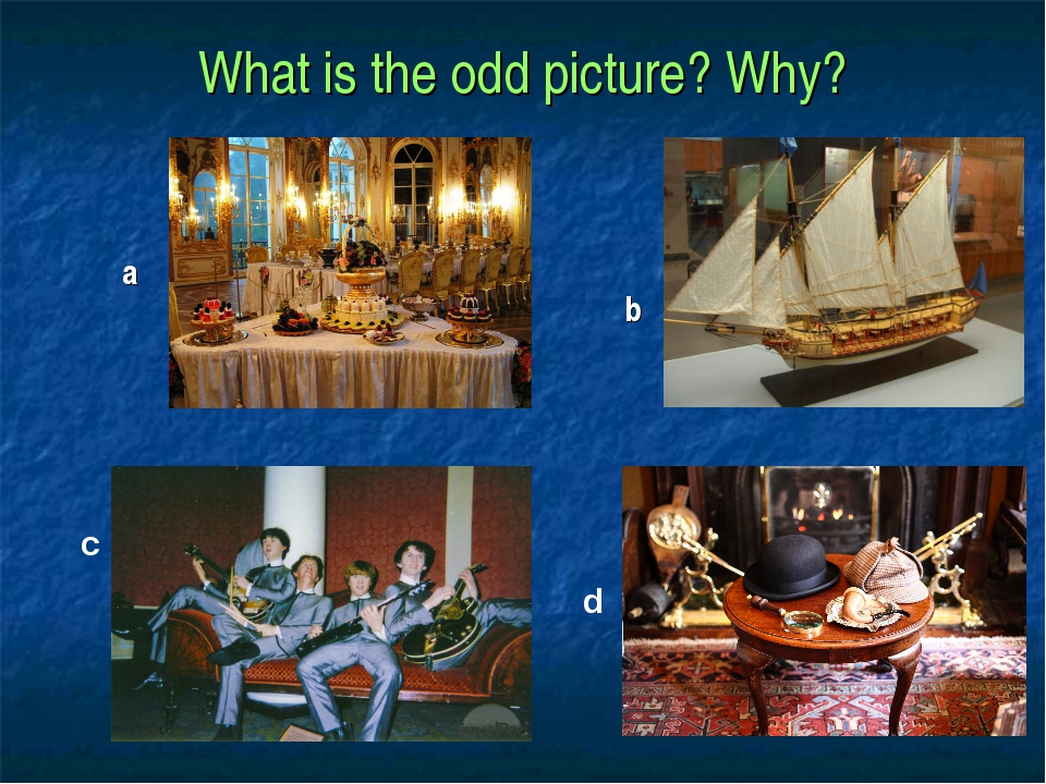 What is the odd picture? Why? a b c d