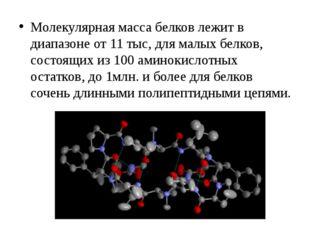Молекулярная масса белков лежит в диапазоне от 11 тыс, для малых белков, сост