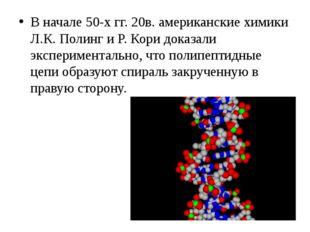 В начале 50-х гг. 20в. американские химики Л.К. Полинг и Р. Кори доказали экс