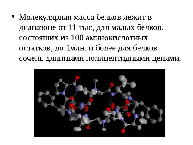 Молекулярная масса белков лежит в диапазоне от 11 тыс, для малых белков, сост...