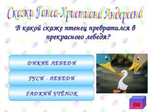 В какой сказке птенец превратился в прекрасного лебедя? ГАДКИЙ УТЁНОК ГУСИ -