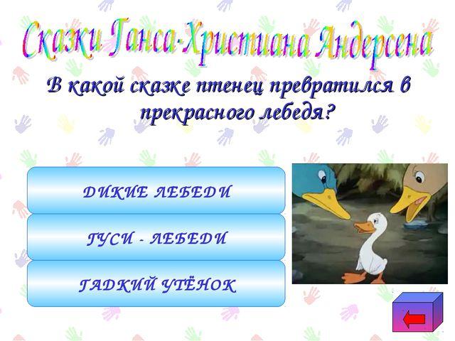 В какой сказке птенец превратился в прекрасного лебедя? ГАДКИЙ УТЁНОК ГУСИ -...
