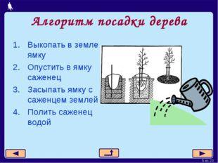 Алгоритм посадки дерева Выкопать в земле ямку Опустить в ямку саженец Засыпат