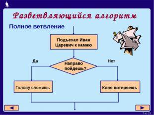 Разветвляющийся алгоритм Полное ветвление Москва, 2006 г. * из 23