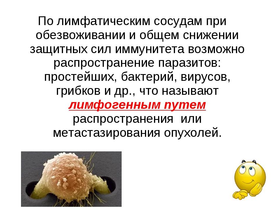 По лимфатическим сосудам при обезвоживании и общем снижении защитных сил имму...