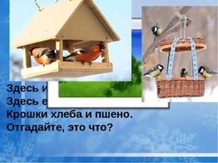 Здесь и гам, и птичье пенье, Здесь есть даже угощенье: Крошки хлеба и пшено.