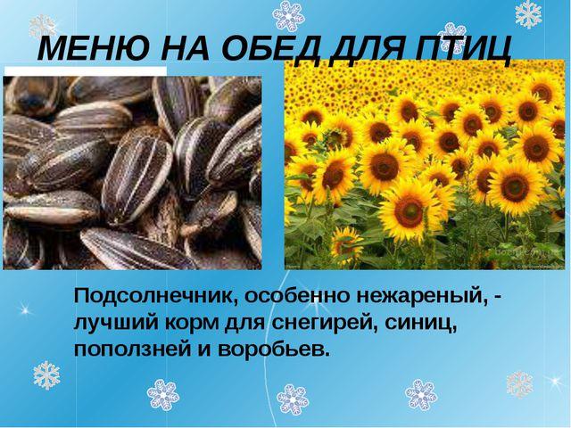 Подсолнечник, особенно нежареный, - лучший корм для снегирей, синиц, поползн...