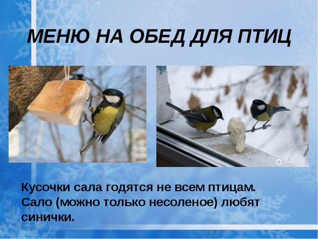 Кусочки сала годятся не всем птицам. Сало (можно только несоленое) любят сини...