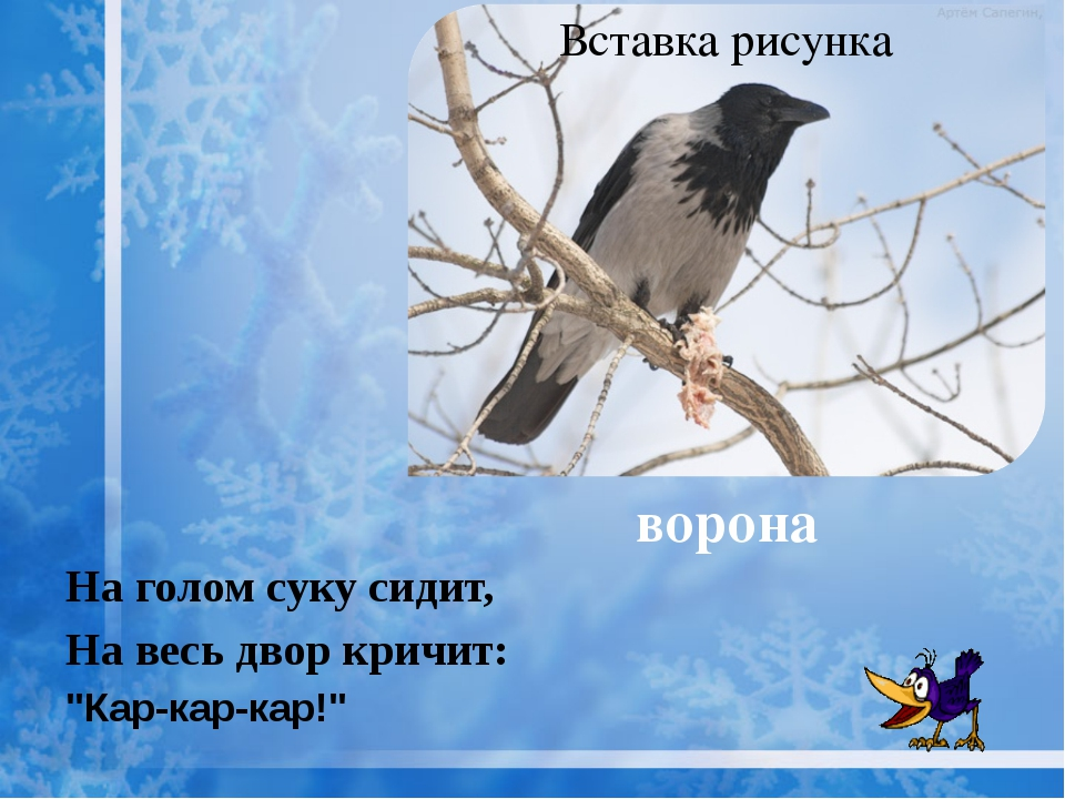 "ворона На голом суку сидит, На весь двор кричит: ""Кар-кар-кар!"""