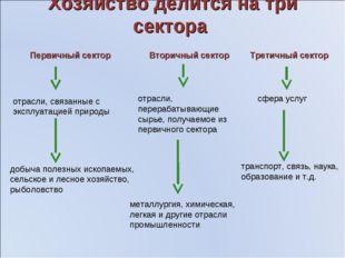 Хозяйство делится на три сектора Первичный сектор Вторичный сектор Третичный