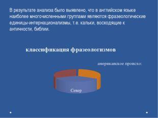 В результате анализа было выявлено, что в английском языке наиболее многочис