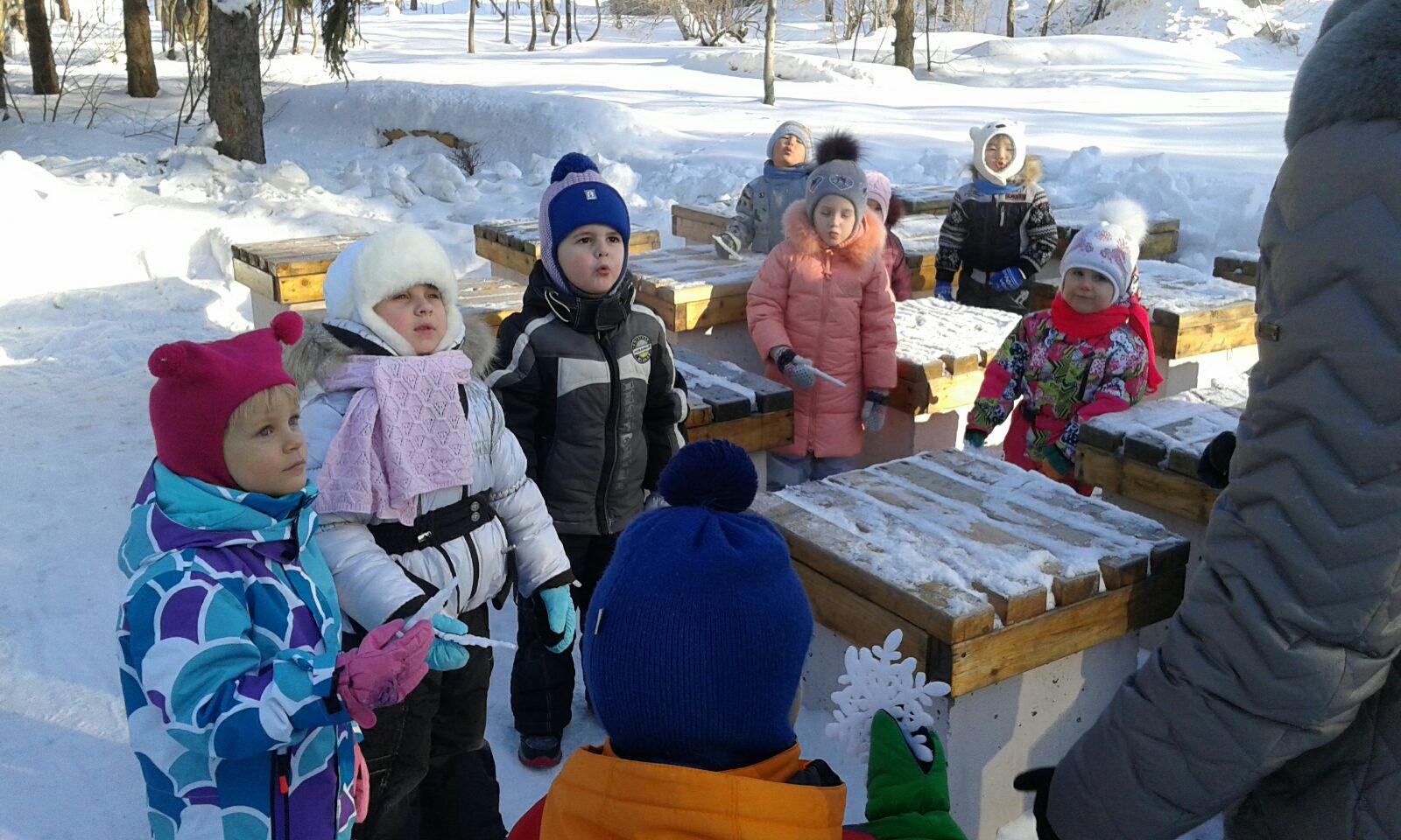 C:\Users\Милана\Pictures\Фото\Детские сады\фото Улыбка\групповые мероприятия\Фото пчёлки\Экскурсия в зимний парк\IMG_3776.JPG