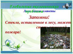 Леса- лёгкие планеты Глобальные экологические проблемы Запомни! Стекло, остав