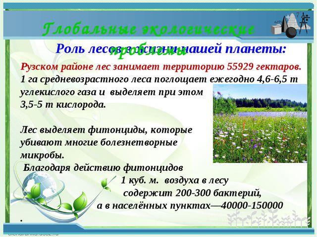 Роль лесов в жизни нашей планеты: Глобальные экологические проблемы Рузском р...