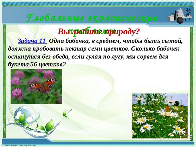 Глобальные экологические проблемы Вы любите природу? Задача 11 Одна бабочк...