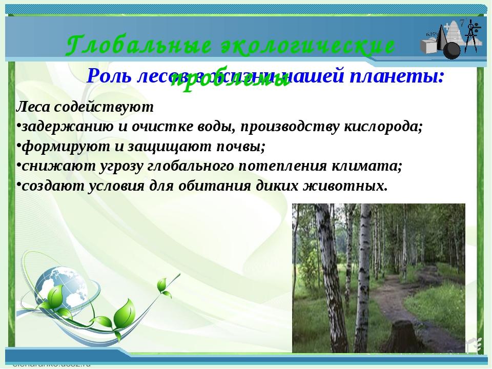 Роль лесов в жизни нашей планеты: Глобальные экологические проблемы Леса соде...
