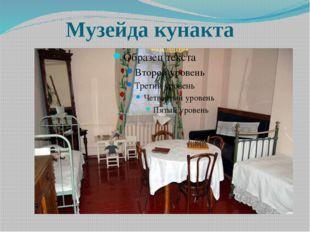 Музейда кунакта