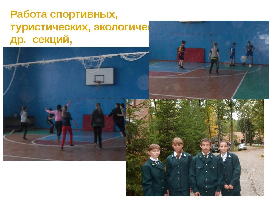 Работа спортивных, туристических, экологических и др. секций, кружков, объед...