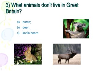 3) What animals don't live in Great Britain? hares; deer; koala bears.