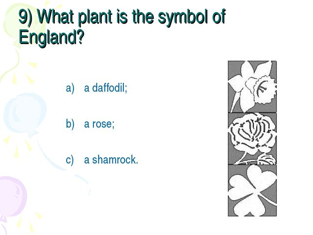 9) What plant is the symbol of England? a daffodil; a rose; a shamrock.