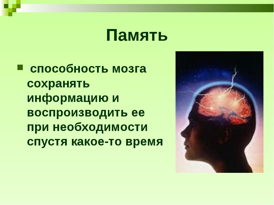 Память способность мозга сохранять информацию и воспроизводить ее при необход...