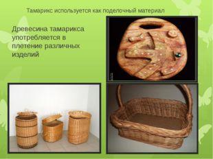 Тамарикс используется как поделочный материал Древесина тамарикса употребляет