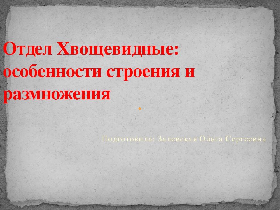 Подготовила: Залевская Ольга Сергеевна Отдел Хвощевидные: особенности строени...