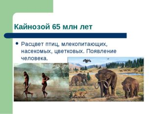 Кайнозой 65 млн лет Расцвет птиц, млекопитающих, насекомых, цветковых. Появле