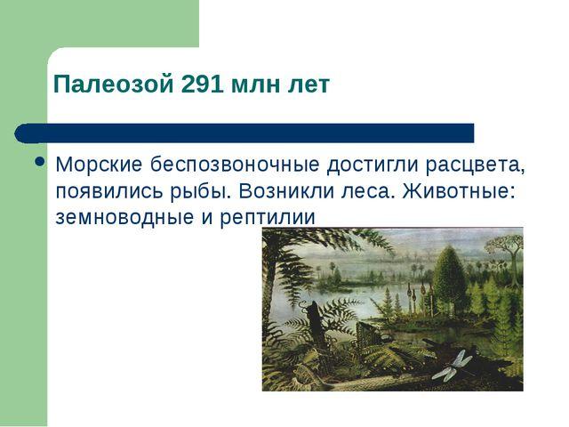 Палеозой 291 млн лет Морские беспозвоночные достигли расцвета, появились рыбы...