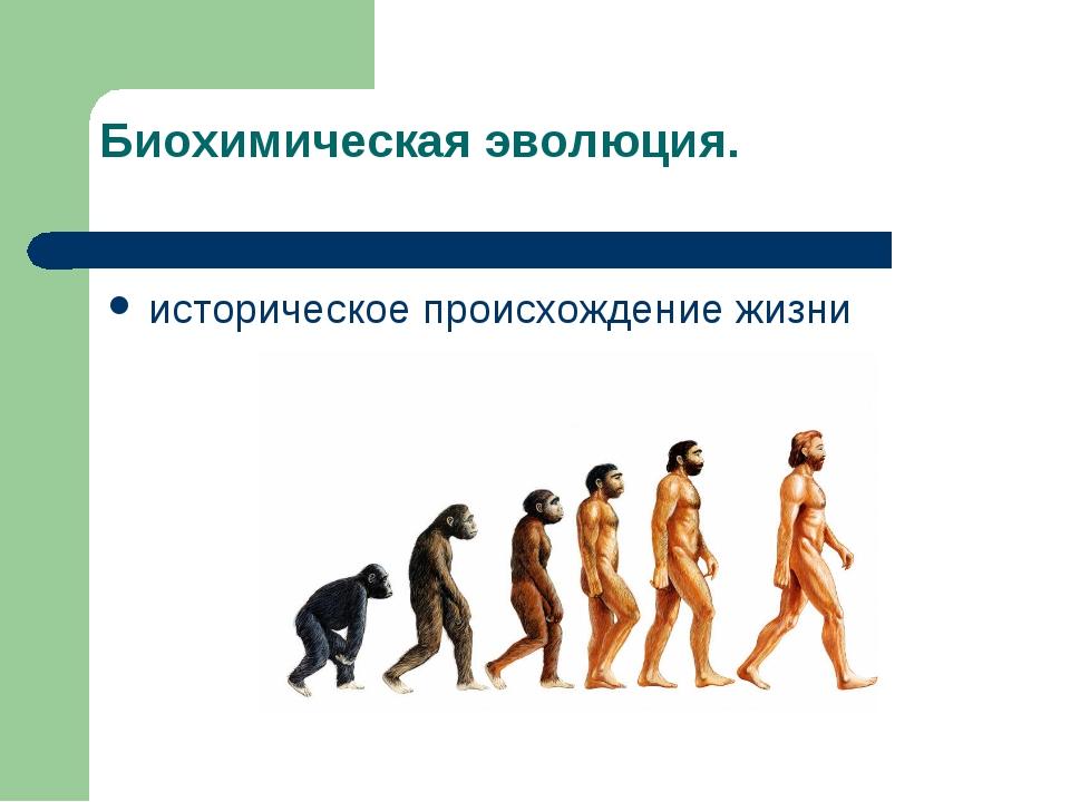 Биохимическая эволюция. историческое происхождение жизни