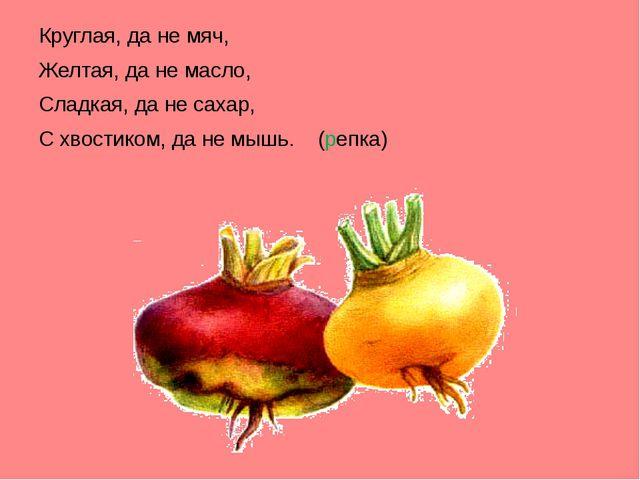 Круглая, да не мяч, Желтая, да не масло, Сладкая, да не сахар, С хвостиком,...