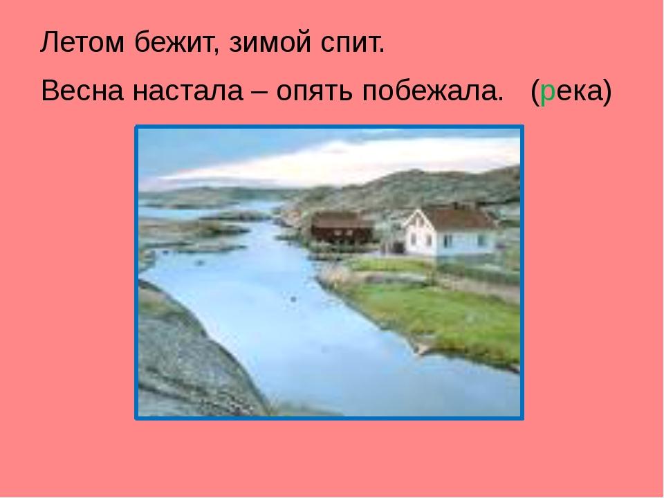 Летом бежит, зимой спит. Весна настала – опять побежала. (река)