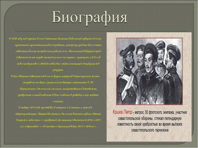 В 1828 году на Украине, в селе Ометинцы Каменец-Подольской губернии в семье к...