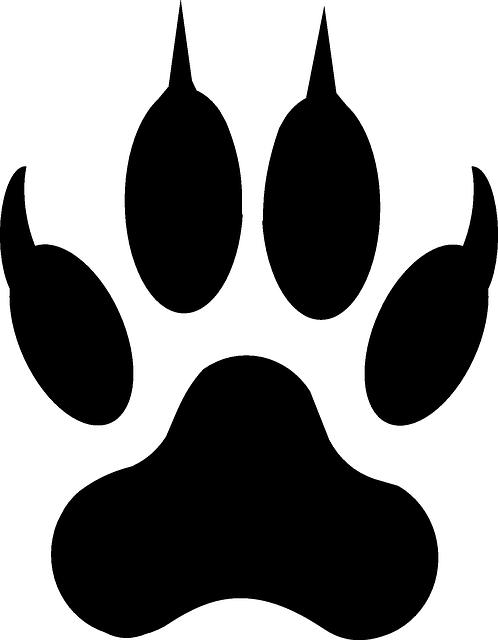 https://pixabay.com/static/uploads/photo/2013/07/12/18/39/wolf-153648_640.png