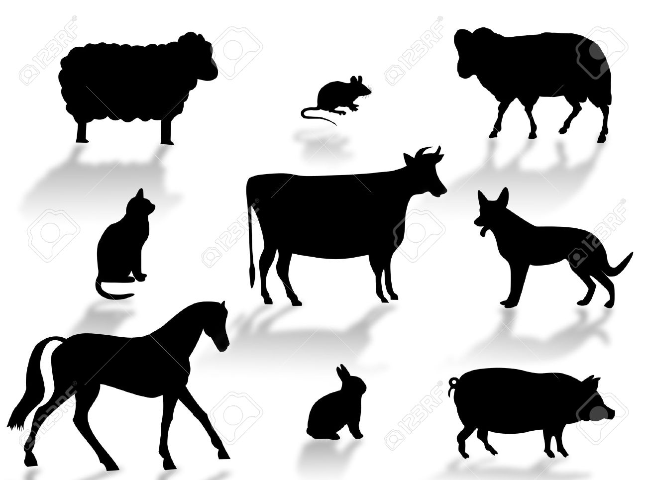 http://previews.123rf.com/images/guilu67/guilu670709/guilu67070900002/1584793-Farm-animals-silhouettes-with-shadows-on-a-white-background-Stock-Photo.jpg