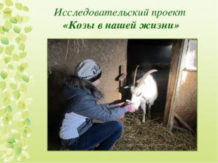 Исследовательский проект «Козы в нашей жизни»