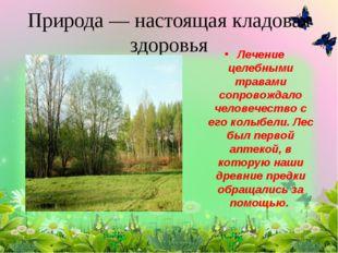 Природа — настоящая кладовая здоровья Лечение целебными травами сопровождало