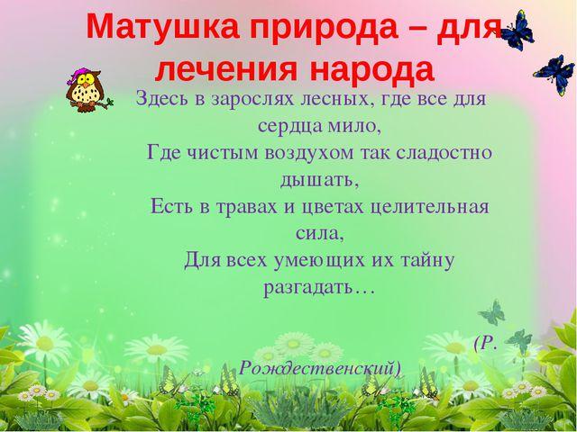 Матушка природа – для лечения народа Здесь в зарослях лесных, где все для се...