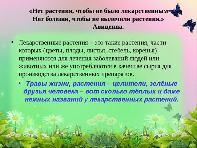 Лекарственные растения – это такие растения, части которых (цветы, плоды, лис...