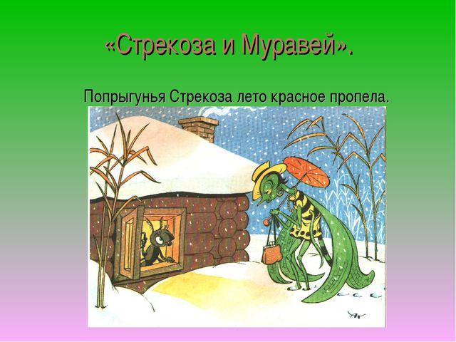 «Стрекоза и Муравей». Попрыгунья Стрекоза лето красное пропела.