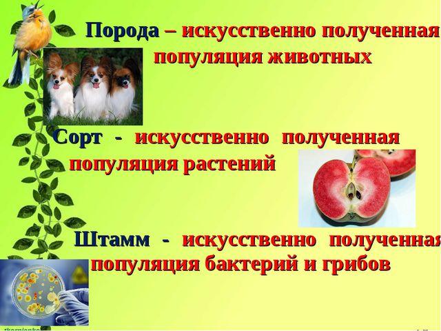 geneticheskie-osnovi-selektsii-i-ee-zadachi