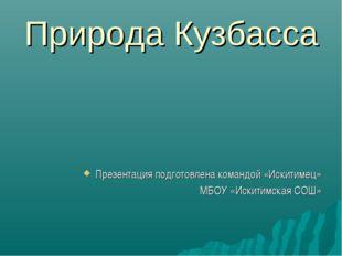 Природа Кузбасса Презентация подготовлена командой «Искитимец» МБОУ «Искитимс