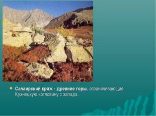Салаирский кряж - древние горы, ограничивающие Кузнецкую котловину с запада.