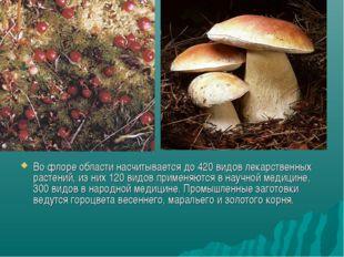 Во флоре области насчитывается до 420 видов лекарственных растений, из них 12