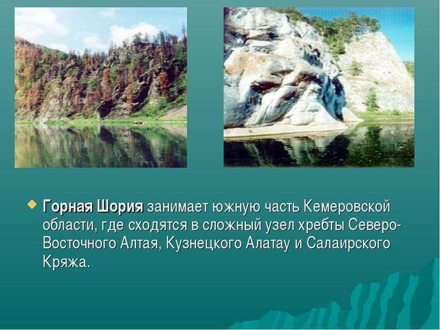 Горная Шория занимает южную часть Кемеровской области, где сходятся в сложный...
