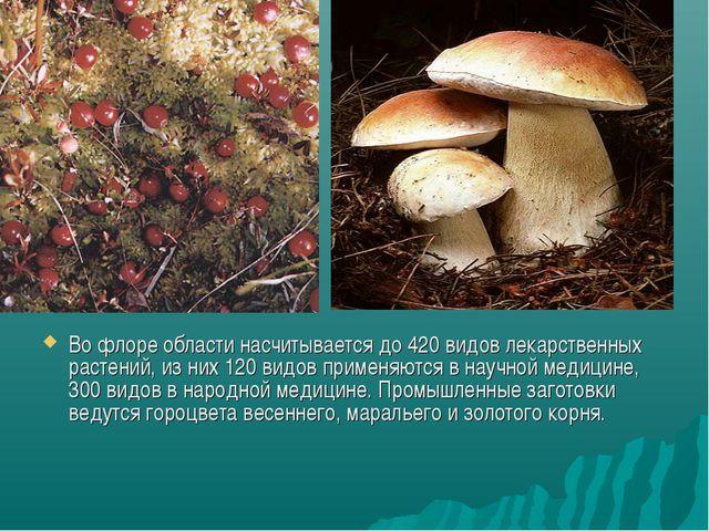 Во флоре области насчитывается до 420 видов лекарственных растений, из них 12...