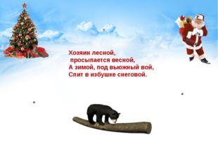 Хозяин лесной, просыпается весной, А зимой, под вьюжный вой, Спит в избушке с